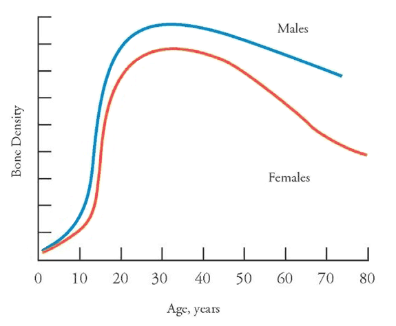 Bone Density Graph